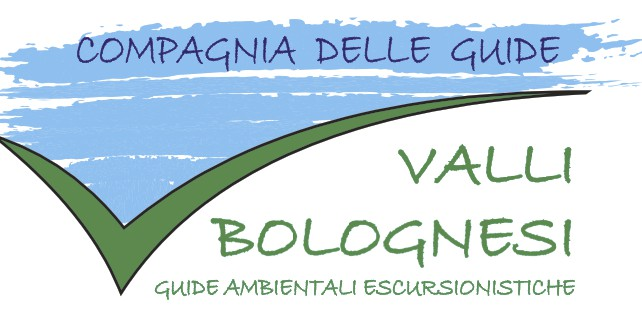 guidevallibolognesi.it